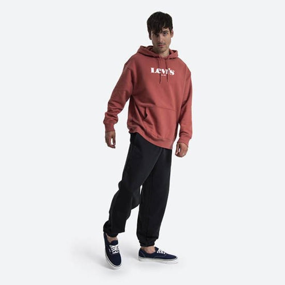 Levi's® Τ2 Relaxed Graphic Hoodie